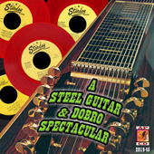 STARDAY STEEL GUITAR